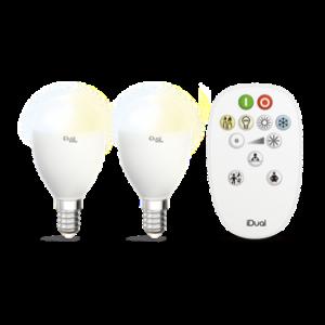 lot-de-2-ampoules-e14-led-avec-telecommande-idual-652983-a5d29a2a
